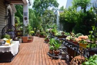 在厦门买了别墅,怎么打造你的私家花园?