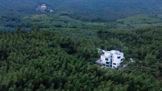 这座隐匿在竹林中的民宿,借景于自然,融于自然,好美